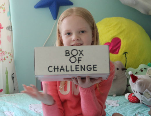 box of challenge review
